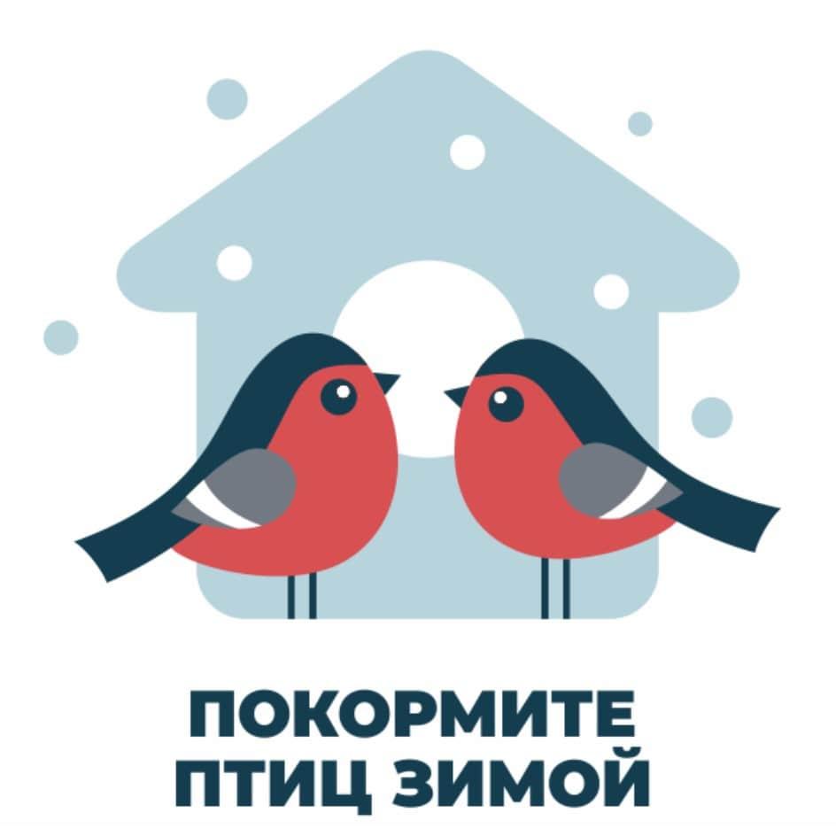 pticy.jpg